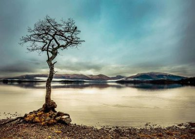 Mark Johnstone Photographer photo of Loch Lomond Milarrochy, Photographer and web designer
