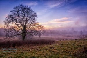 Clearing Fog By Mark Johnstone Photography & Design