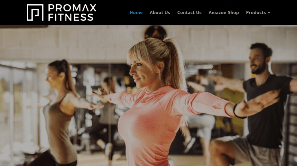 Promax Fitness web design by us