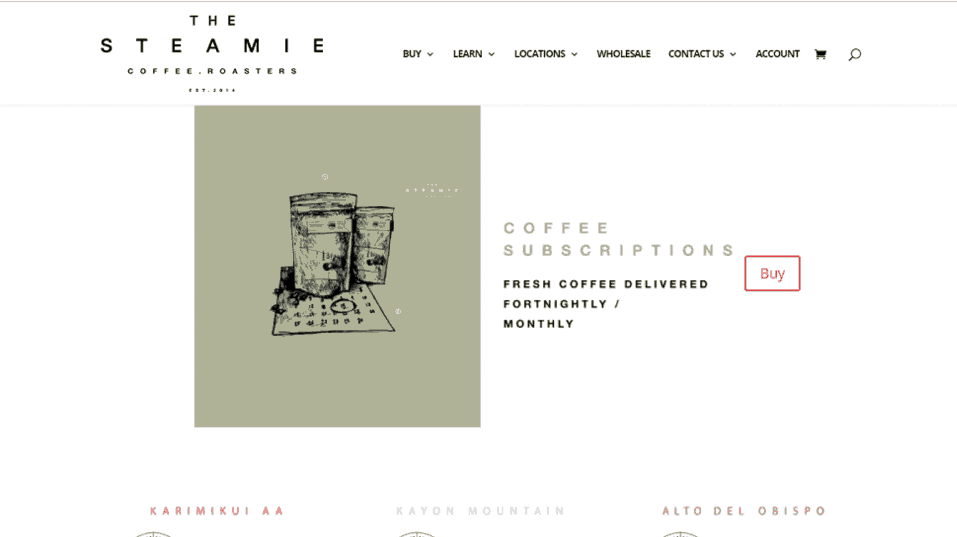 The Steamie Web designed by us